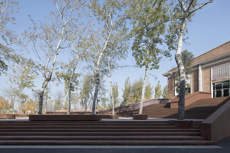 35-杨树与台阶