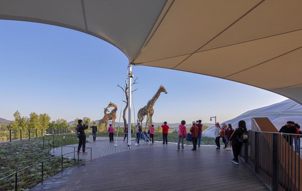 屋顶的长颈鹿艺术装置